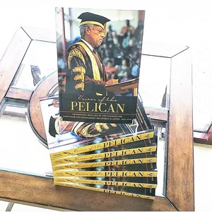 Voices of The Pelican