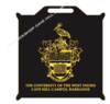University Stadium Cushions